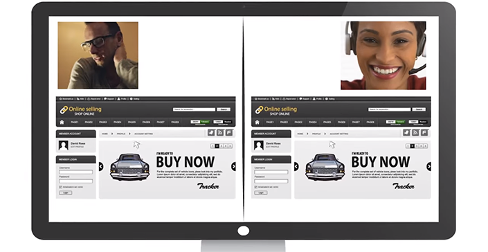 Will cars be purchased online in the future